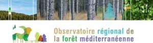 observatoire de la forêt méditerranéenne